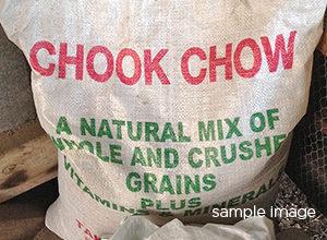 Chook chow